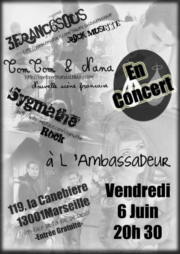 3francs6sous; 3 francs 6 sous; rock musette; chanson française; concert; marseille; ambassadeur